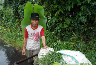 Soputan, Sulawesi, Indonesia - This is his raincoat