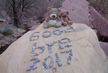 Rexy swept the stones and went to play with the bears the moment they were out of the bag. You can see the wet paw prints. Jeanne put the writing back together.
