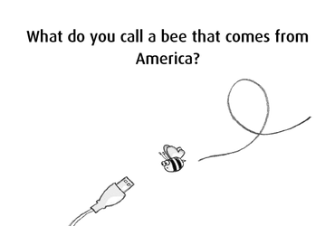 What do you call a bee that comes from America?