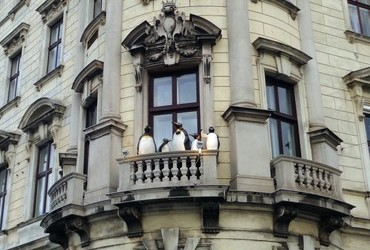 Tourists in Vienna