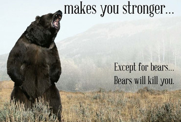 What doesn't kill you makes you stronger... Except for bears... Bears will kill you.