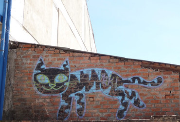 Cat on the roof graffiti - Huaraz, Perú