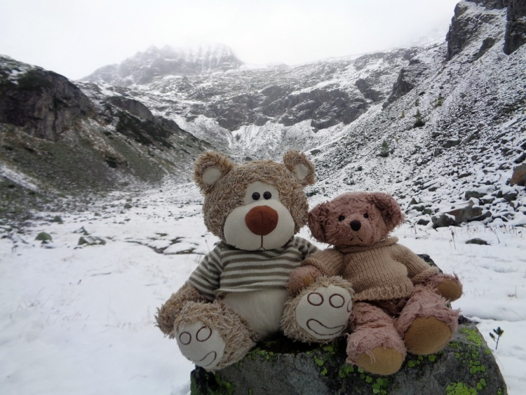 Teddy Land: Our first snow bivouac