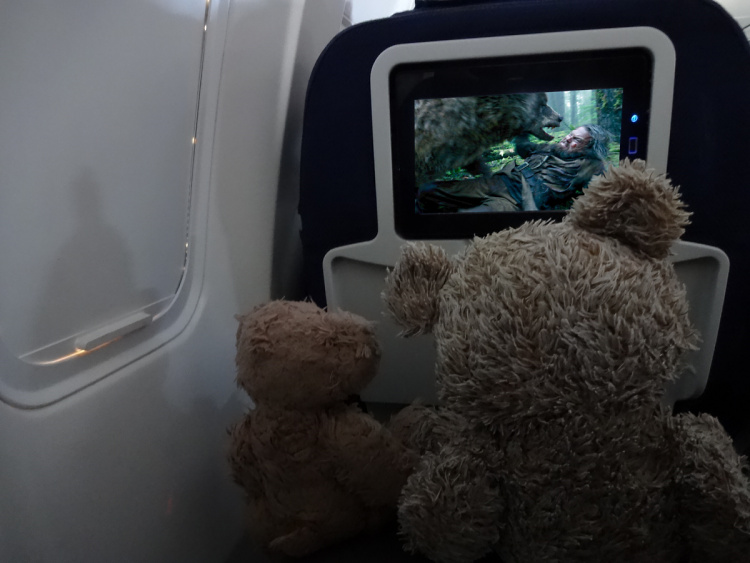 Teddy Land: Inflight entertainment