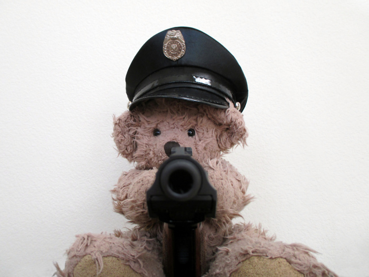 Teddy Land: Special Police