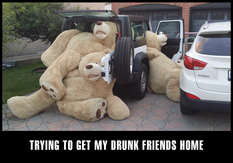 Teddy Land: Trying to get my drunk friends home