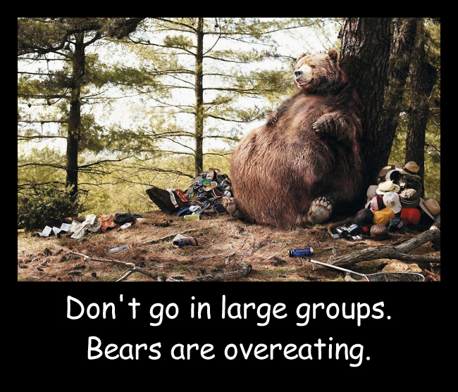 Teddy Land: Don't go in large groups. Bears are overeating.