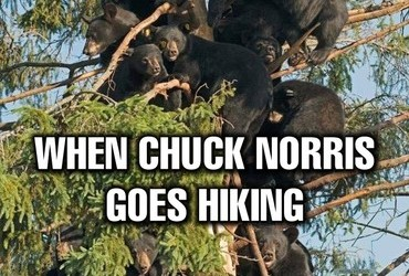 When Chuck Norris goes hiking