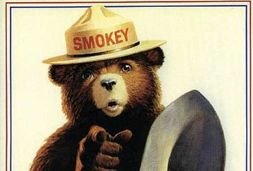 Smokey is the mascot of the Unitd State Forest Service